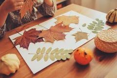 Menina da criança que faz o herbário das folhas secadas em casa, da arte da natureza e do ofício fotos de stock royalty free