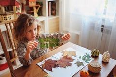 Menina da criança que faz o herbário em casa, ofícios sazonais do outono Imagens de Stock Royalty Free