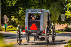 A menina de Amish olha fora de um carrinho foto de stock royalty free