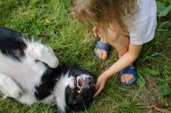 A menina de cabelo loura pequena está jogando com seu cão branco e preto que encontra-se na grama de Greem Fotos de Stock