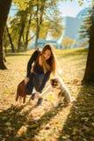 A menina de cabelo marrom bonita nova está treinando o cachorrinho do cão de puxar trenós imagens de stock