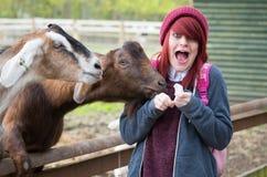 Menina de cabelo vermelha Imagens de Stock Royalty Free