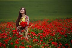 A menina de cabelos compridos sensual, assentada no papoilas vermelhas coloca, em um fundo bonito da paisagem do verão imagem de stock