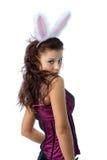 Menina de coelho 'sexy' Fotos de Stock Royalty Free