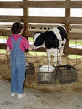 Menina de exploração agrícola Fotografia de Stock