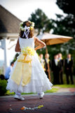 Menina de flor em um casamento Fotografia de Stock