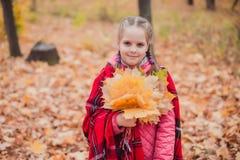 Menina de Litltle com a cobertura de lã nos soulders no parque do outono imagem de stock