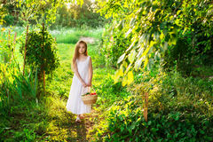 A menina de sorriso bonito guarda a cesta com frutas e legumes Imagem de Stock