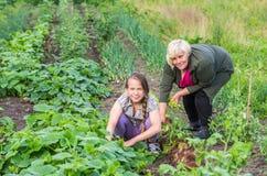 Menina de sorriso e sua avó Foto de Stock Royalty Free