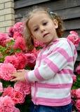 A menina de três anos na perspectiva de um arbusto das rosas de florescência Fotos de Stock