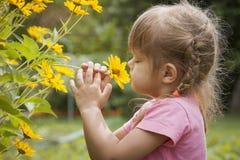 Menina de três anos que sniffing a flor amarela Imagens de Stock