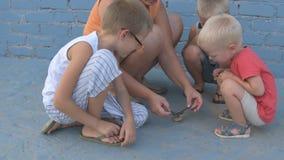 A menina delgada com crianças travou o pintainho do pardal e olhou-o em seus braços filme