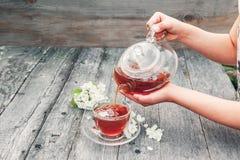A menina derrama o chá erval quente do jasmim em um copo de vidro transparente em uma tabela de madeira imagem de stock royalty free