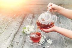 A menina derrama o chá erval quente do jasmim em um copo de vidro transparente em uma tabela de madeira foto de stock royalty free