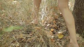 A menina descalça anda com o close-up da floresta dos pés que anda na grama no movimento lento video estoque