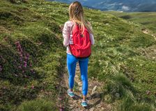 Menina desportiva do turista com escaladas vermelhas da trouxa em montanhas ou em caminhadas, verão exterior fotos de stock