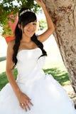 Menina do aniversário de Quinceanera Foto de Stock Royalty Free
