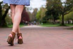 Menina do círculo estudantil feminino no caminho do tijolo fotografia de stock royalty free