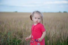 Menina do cabelo de Brown que joga no campo do centeio Imagens de Stock