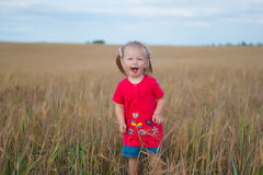 Menina do cabelo de Brown que joga no campo do centeio Fotos de Stock Royalty Free