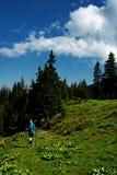Menina do caminhante nas montanhas Imagens de Stock Royalty Free