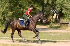 Menina do cavaleiro Imagens de Stock Royalty Free