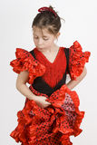 Menina do Flamenco Fotografia de Stock Royalty Free