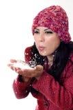 Menina do inverno Imagem de Stock Royalty Free