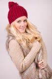 Menina do inverno Fotografia de Stock Royalty Free