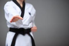 A menina do karaté com cinturão negro Imagem de Stock