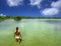 Menina do mergulho fotos de stock royalty free