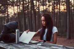 Menina do moderno que abre um portátil para trabalhar em um banco de madeira ao ter uma ruptura na floresta bonita do outono fotografia de stock royalty free