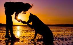 Menina do moderno que joga com cão em uma praia durante o por do sol, silhuetas Fotografia de Stock Royalty Free