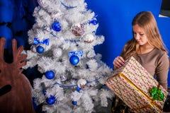 Menina do Natal com presente Imagem de Stock Royalty Free