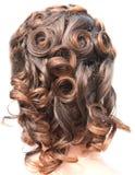 Menina do penteado Fotos de Stock Royalty Free