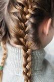 Menina do penteado Fotografia de Stock