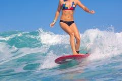 Menina do surfista. fotos de stock