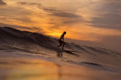 Menina do surfista no oceano no tempo do por do sol Foto de Stock Royalty Free