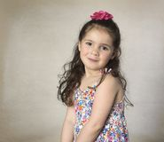 Menina doce com cabelo marrom longo fotos de stock royalty free