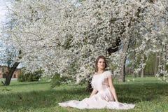 Menina doce macia bonita em um vestido cor-de-rosa com uma árvore de florescência próxima do penteado em um dia de mola ensolarad Fotos de Stock
