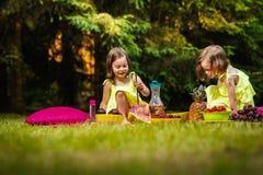 A menina dois nos vestidos está jogando no piquenique Imagens de Stock Royalty Free
