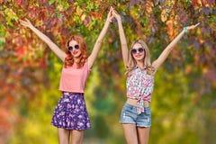 Menina dos amigos que tem o divertimento Forma da queda Parque ao ar livre Imagem de Stock