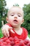 Menina dos anos de idade que come framboesas Fotografia de Stock