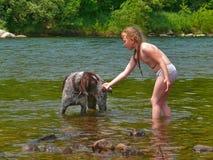 Menina e cão 11 Fotos de Stock Royalty Free
