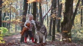 Menina e cão Mulher bonita que joga com seu cão Criança e cão Menina que joga com o cão na menina da floresta com filme