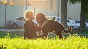 Menina e cão preto grande que sentam-se no gramado no parque, luz solar, na grama verde-clara do primeiro plano filme