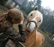 Menina e cavalo Foto de Stock Royalty Free