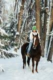 Menina e cavalo bonitos no inverno Foto de Stock Royalty Free