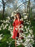 Menina e Cherry-tree Fotografia de Stock