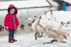 menina e cisne Fotos de Stock Royalty Free